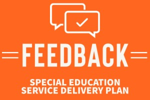 feedback graphic for special education service delivery plan