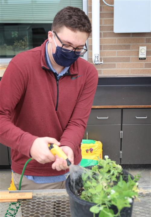 valley junior nathan steimel waters plants inside valley's greenhouse
