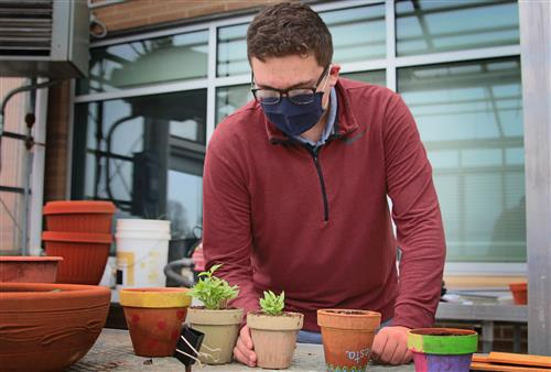 nathan steimel examines a plant in valley's greenhouse